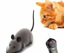 topo telecomandato per gatti