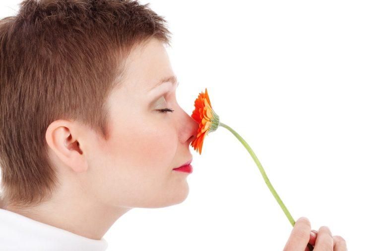 eliminare odori animali da casa